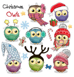 Set of christmas owls on a white background vector