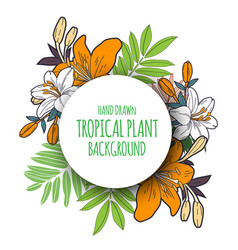 tropical floral bunch 3 vector image