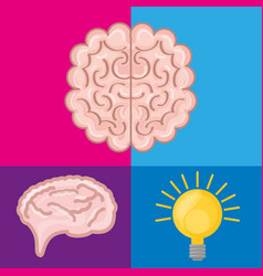 brain set icon knowledge and creativity vector image
