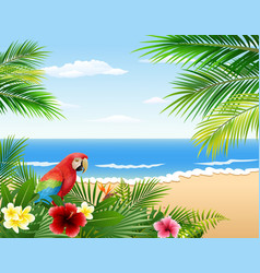 cartoon parrots with beaches and tropical plants vector image