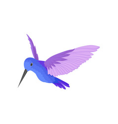 Flat icon beautiful blue hummingbird vector