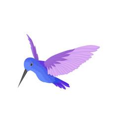 Flat icon of beautiful blue hummingbird vector