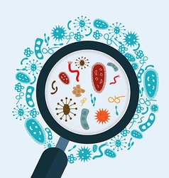 Magnifier glass with bacteria microbes and virus vector