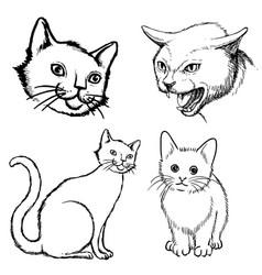 set cat doodle hand drawn vector image