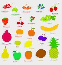 Set handdrow fruits and berries vector