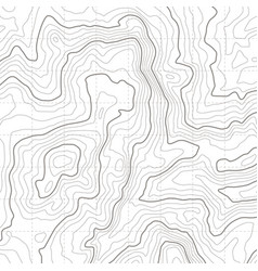 Topographic map geographical location lines vector