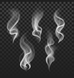 transparent steam cigarette smoke waves fog vector image