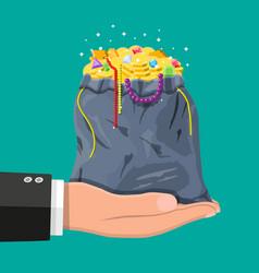 treasures in bag in hand vector image