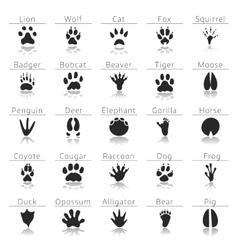 Animal track prints set vector