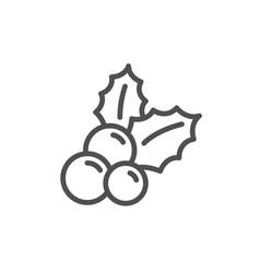christmas holly line icon ilex aquifolium sign vector image