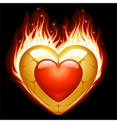 jewelry heart in fire vector image