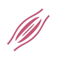 organs logo concept template internal organs vector image