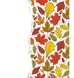 Pattern with autumn leaves vector
