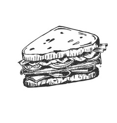 Sketch of sandwich with tomatoes and herbs vector