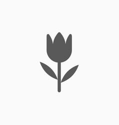 tulip icon vector image