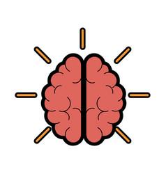 Brain organ icon vector