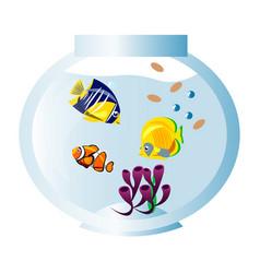 different fish in aquarium vector image