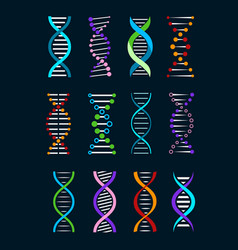 dna helix isolated icons genetics biotechnology vector image