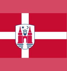Flag of nyborg in southern denmark region vector