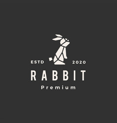 Geometric rabbit hare bunny hipster vintage logo vector