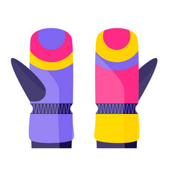 Pair of skiing snowboarding gloves winter sport vector
