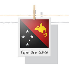 photo of papua new guinea flag vector image