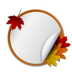 Round banner with autumn leaves vector