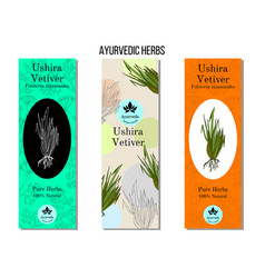 Ayurvedic herbs banners vetiver chrysopogon vector