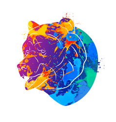 bear icon abstract vector image