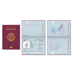 passport template official id document visa vector image