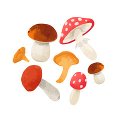 Watercolor mushroom composition vector