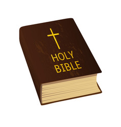 holy bible hard cover vector image