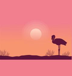 silhouette flamingo scene collection stock vector image vector image
