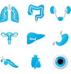 Human body parts detailed set vector image vector image