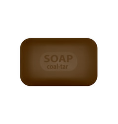 a piece of tar soap in a on a white backgro vector image