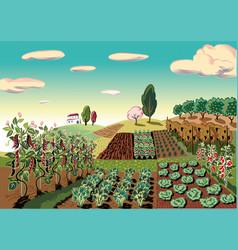 Agricultural landscape vector