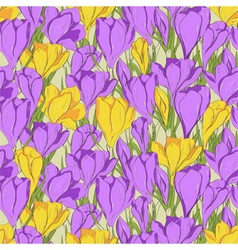 crocus seamless patterm 1 purple yellow vector image