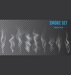 Delicate white cigarette smoke waves on vector