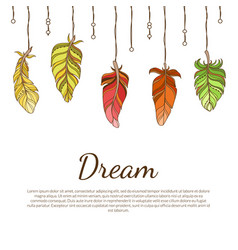dream banner with ethnic colorful feathers native vector image