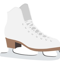 Figure skate vector image
