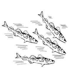 Hand drawn school of northen fish vector