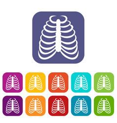 rib cage icons set vector image vector image
