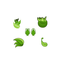set leaf logo designs inspiration isolated on vector image