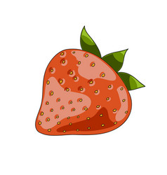 strawberry berry icon vector image
