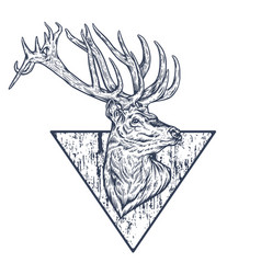 Wild deer black and white vector