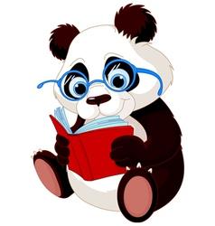 Cute Panda Education vector image vector image