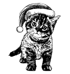 kitten with christmas hat vector image vector image
