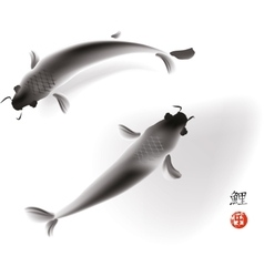 Couple of koi carp vector image vector image