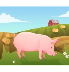 pig on farm vector image
