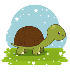cute adorable turtle animal cartoon vector image vector image